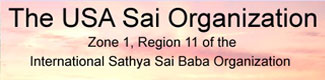The USA Sai Organization